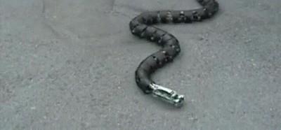 Enlace a El alucinante movimiento de una serpiente robótica
