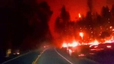Enlace a Conducir a través de un bosque en llamas es como estar en el infierno