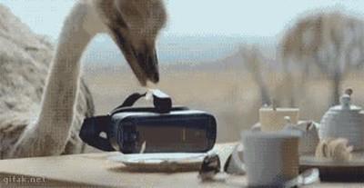 Enlace a Lo que pasa cuando una avestruz prueba unas gafas de Realidad Virtual