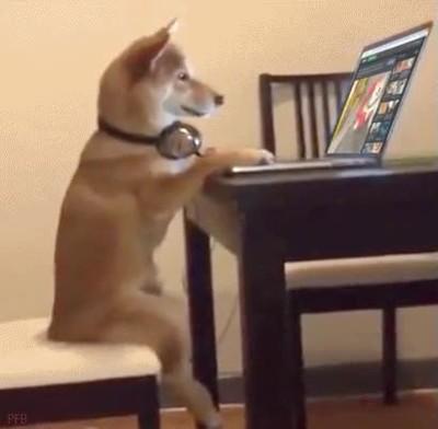 Enlace a Cuando te sientas a ver vídeos de tu infancia en el portátil