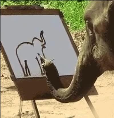 Enlace a ¿Alguna vez te has preguntado cómo si dibujaría un elefante a sí mismo?