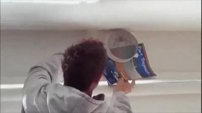 Enlace a Un buen truco para atrapar arañas en casa