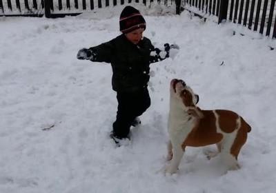 Enlace a Perro tomándose la más dulce de las venganzas