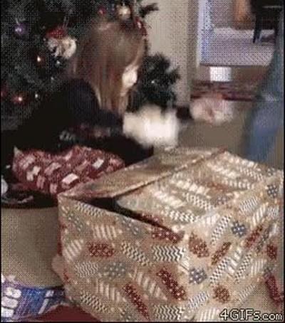 Enlace a ¿Dónde está mi regalo?