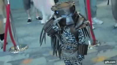 Enlace a El Predator no es tan fiero como lo recordaba
