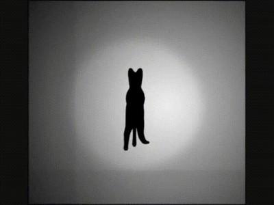 Enlace a Teóricamente esta ilusión óptica gira en las dos direcciones