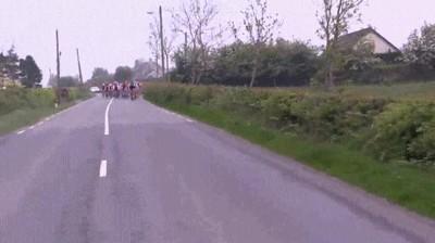 Enlace a Caballos que tienen entre ceja y ceja participar en la vuelta ciclista