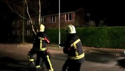 Enlace a Perros que en otra vida fueron bomberos e intentan echar un cable
