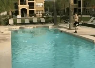 Enlace a Saltando de punta a punta de la piscina. ¿Lo conseguirá?
