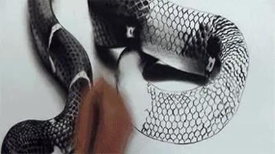Enlace a Dibujando una alucinante serpiente en 3 dimensiones