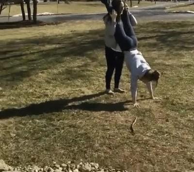 Enlace a En realidad el perro estaba preocupadísimo por ella
