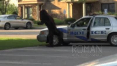 Enlace a Hombre disfrazando de perro haciendo sus necesidades en un coche de policía