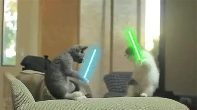 Enlace a El 2050 en japon llega...¡Cat wars!