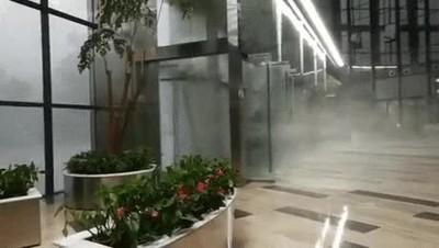 Enlace a Lo que se ve desde la recepción de un hotel cuando pasa un tifón