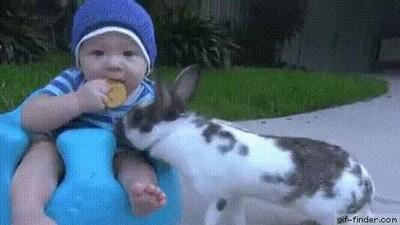 Enlace a Este niño acaba de aprender una importante lección en la vida