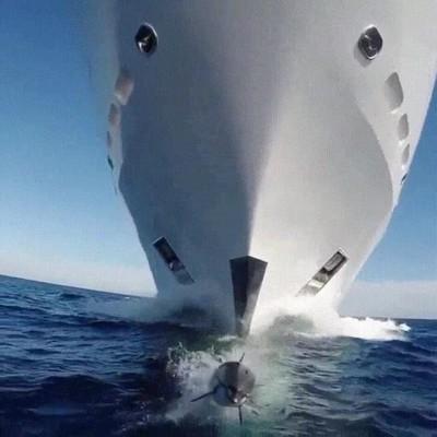 Enlace a Cuando estás tranquilo navegando y recibes una visita sorpresa