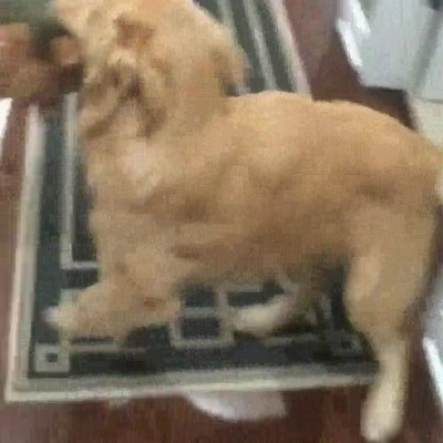 Enlace a Mamá por favor abre la puerta, quiero salir a jugar