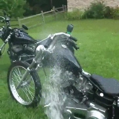 Enlace a Perros que no quieren que caiga una sola gota de agua en la motocicleta