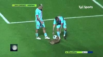 Enlace a Perros con ganas de cachondeo en un campo de fútbol