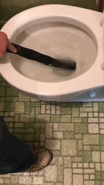 Enlace a Creo que no volveré a ir al lavabo nunca más