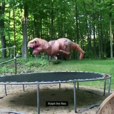 Enlace a A un T-Rex le hace falta entrenar mucho para llegar a dominar un salto mortal
