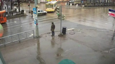 Enlace a A veces es imposible cruzar la calle sin ver cosas raras