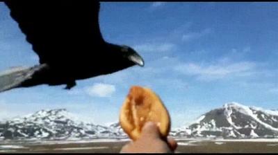 Enlace a Los cuervos de Juego de Tronos vuelan hasta demasiado lentos para mi gusto