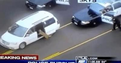 Enlace a Perro de la unidad canina sacando de su coche a un sospechoso