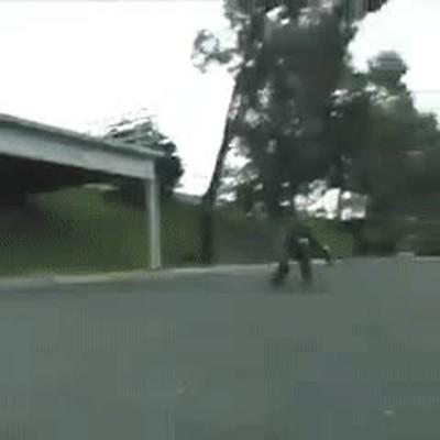 Enlace a Gente que cree que su coche es un skateboard