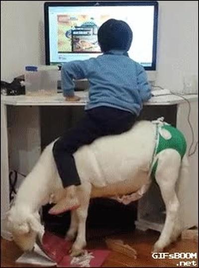 Enlace a Cuando tu hijo te pida una silla para gamers