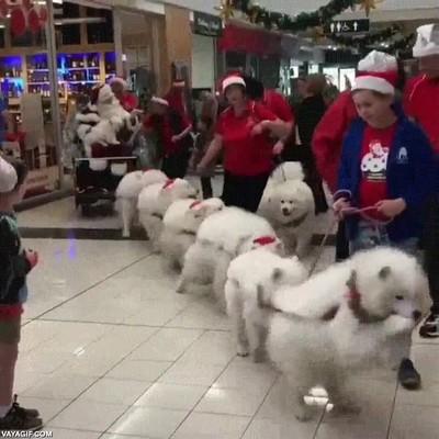 Enlace a Los ayudantes de Santa Claus ya han llegado a la ciudad