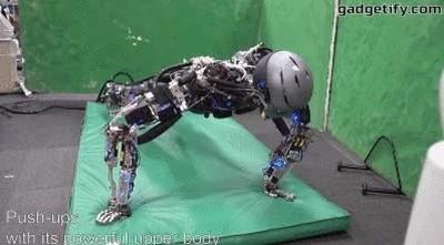 Enlace a Robots que también entrenan para estar en forma
