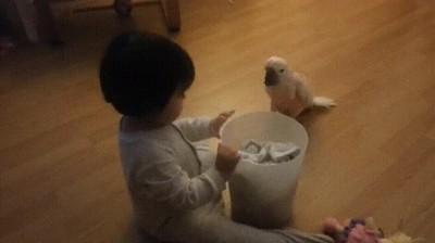 Enlace a La niñera perfecta para sus pequeños