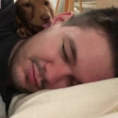 Enlace a Cuando tu perro te despierta para bajar a la calle