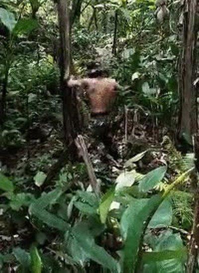 Enlace a Érase una vez un hombre tan fuerte que talaba los árboles a puñetazos