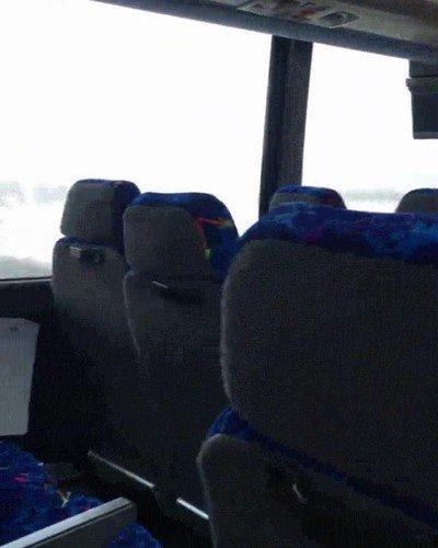 Enlace a Sentarse a su lado hace cualquier viaje de bus más agradable