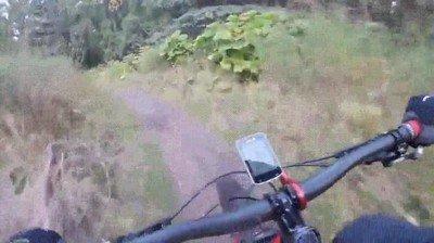 Enlace a El momento de pánico de un ciclista cuando se encuentra con un oso en su camino