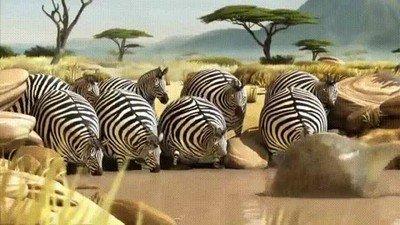 Enlace a Si los animales salvajes fuesen globos...