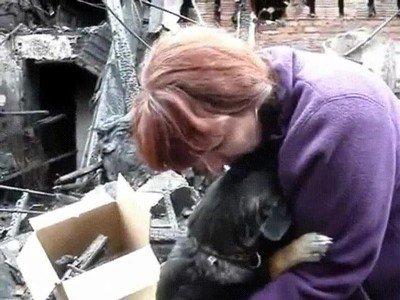 Enlace a Un perro abrazando a su humana después de haber perdido su casa en un incendio