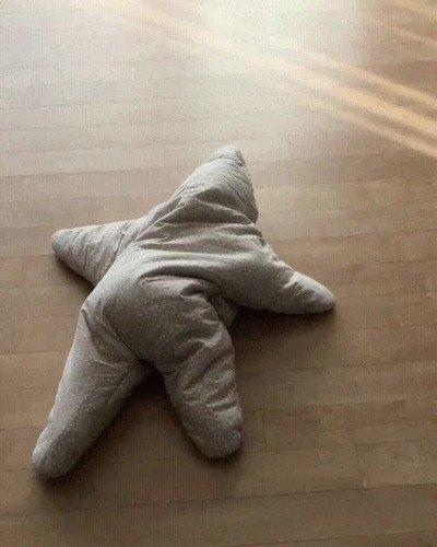 Enlace a Nunca has visto mejor imitación de una estrella de mar