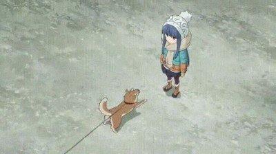 Enlace a Hay dos tipos de perros cada vez que ven a la persona que más quieren