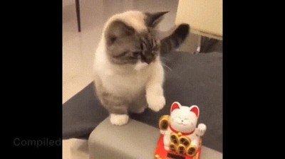 Enlace a Gatos imitando al típico gato de los chinos