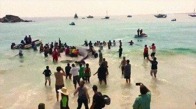 Enlace a Gente ayudando a una ballena. Aún podemos tener fe en la humanidad