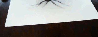 Enlace a El increíble dibujo de una mariposa que parece cobrar vida