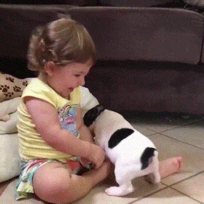 Enlace a Nada más adorable que un cachorro de perro y un cachorro de humano