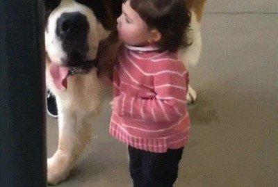 Enlace a No hay nada más adorable que un beso de una niña pequeña a un perro