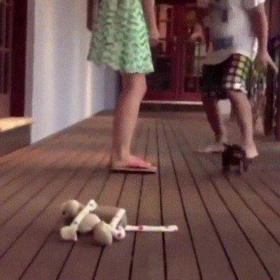Enlace a Perros que están totalmente en contra de la violencia doméstica