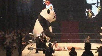 Enlace a El combate más difícil en la carrera de este luchador,