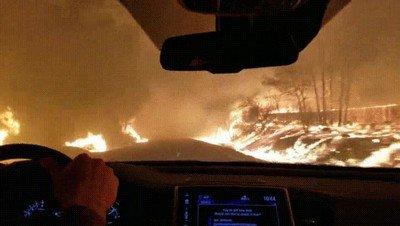 Enlace a Escapar de un incendio es más terrorífico de lo que piensas