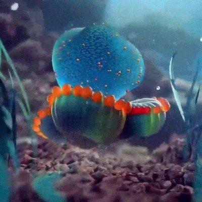 Enlace a Parece que esta medusa esté bailando en una discoteca